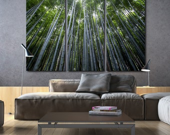 Bamboo Trees on Canvas in Rain Forest, Large Canvas art, Rain Forest Photo, Large Wall art, Canvas Poster, Tree Painting, Trees in Forest