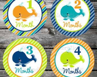 Set of Baby Monthly Stickers Boy Whales Baby Milestone Stickers Baby Month Stickers Baby Bodysuit Sticker Baby Shower Photo Prop