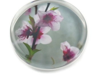 Peach Tree Paperweight - Original Fine Art Print Decoupaged on Crystal Glass - Handmade Gifts