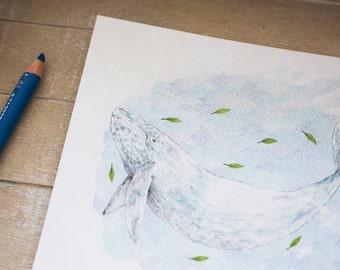Blue Whale 4x6 Print - High Quality Print - Watercolor Illustration - Botanical - Animals
