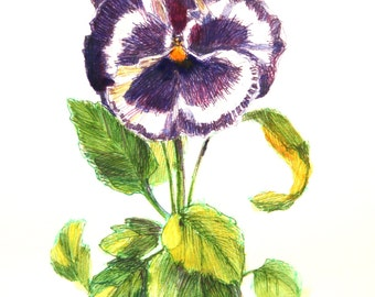 """ON SALE, Pansy Painting, Original Painting, """"Purple Pansy"""" by Kim Stenberg, Rich Impressionistic Art, Matted, Ready for a 14 x 11"""" Frame"""