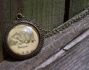 Honey Badger Don't Care-- Vintage Dictionary Print Necklace-- Handmade Jewelry--Honey Badger Gift