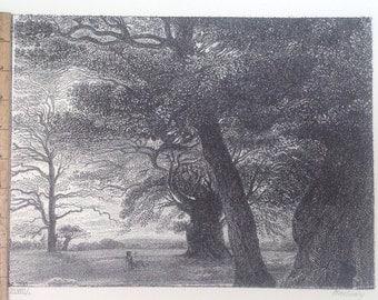 Woman In Forrest Of Trees -  Original Print by Karlovsky