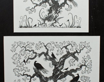 Bird Illustration Sale and illustration and ink original black and white picture and original ink bird illustration and bird ink picture