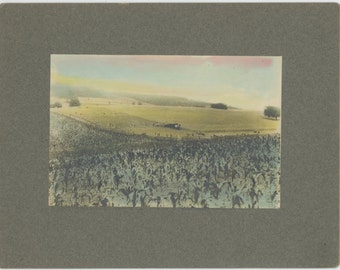 Cutting Hay, Early 1900s Hand-Tinted Antique Mounted Cabinet Photo (54342O/S)