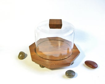 Vintage Covered Cheese Dome Small Cake Plate Mid Century Wood Tray with Glass Cover 50s Terrarium Plant Display Cheese Board Dessert Stand