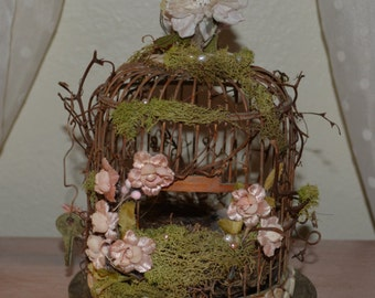 Enchanted Birdcage