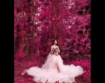 Any Color Juliet Tutu Extra Long Romantic Adult Ballroom Tulle Skirt Weddings Maternity Photo Prop