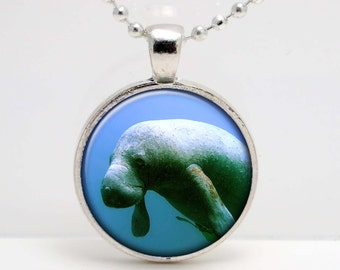Manatee  Photo Altered Art  Glass Photo Pendant or Key Chain- 30 mm round- Chain Included- Made to Order