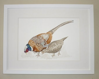 SALE Pheasant Original Watercolour, Pheasant Painting, Pheasant Illustration, bird watercolour, British Wildlife painting