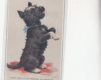 "Artist Florence Valter Terrier W White Paws Black Body,Begging"" From One Little Beggar To Another"" Postcard"