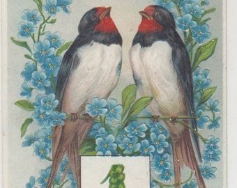 New Year-January 1 Calendar-Beautiful Birds-Flowers-Embossed Antique  Postcard 1910