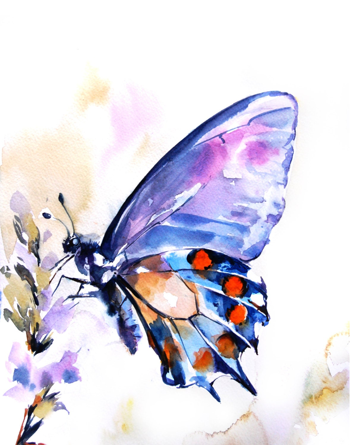Butterfly Watercolor Painting Art Print Orange By