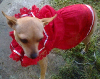 Red Mexican Dress for Pets- Vestido rojo mexicano para mascotas