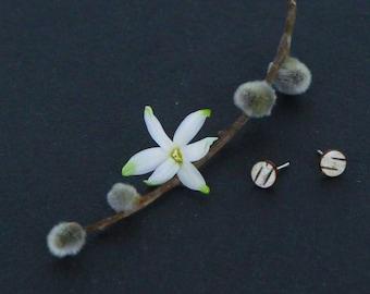 Birch bark post earrings, Circlets