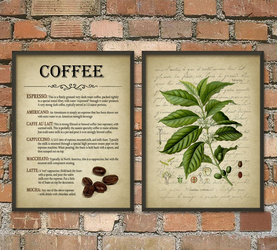Coffee Wall Art Poster Set Of 2 Coffee Types Antique Coffee