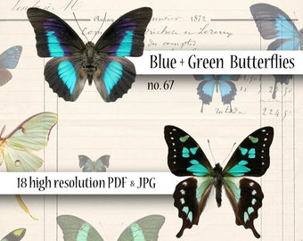 Butterflies Blue and Green Digital Collage Sheet Wings Instant Download Mixed Media Altered Art Images dcs67