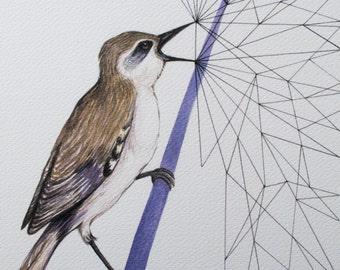 Shouting Bird_Print