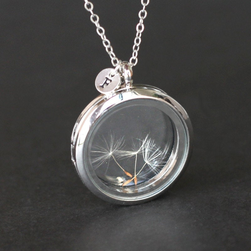 real dandelion seed necklace make a wish window locket
