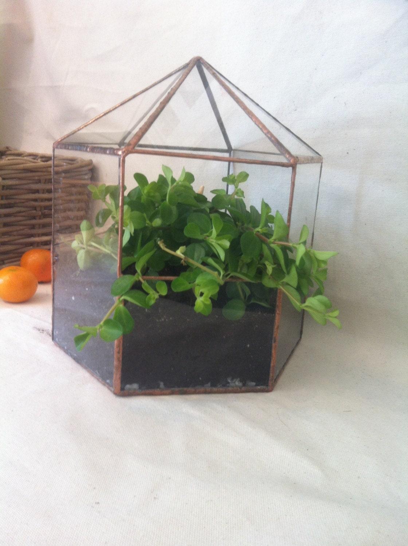 Large terrarium planter indoor garden geometric glass for Indoor gardening glasses