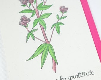 Agrimony for gratitude card