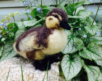 Needle Felted Mallard Duckling Fiber Art Made to Order