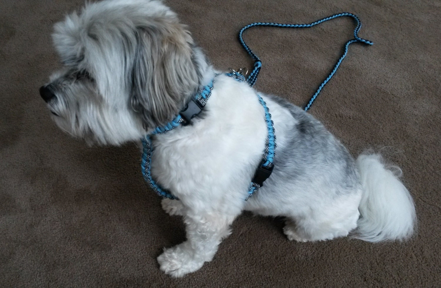 how to make a dog harness out of paracord