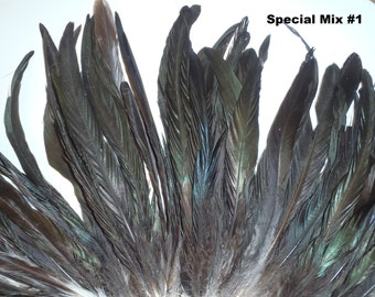 Long Feathers, Feather Assortment, Feathers for jewelry and other crafts