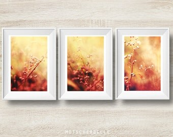 Gestrüpp - photography print - 3 parts - tryptichon - nature abstract - warm colours - self-made, hand-made - high quality - rare print