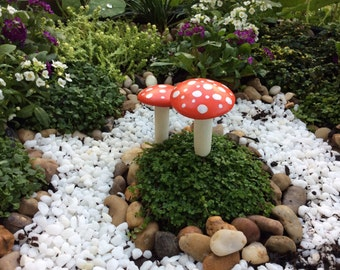 Red and white toad stools