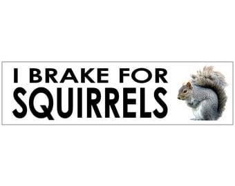 I Brake for Squirrels Decal Vinyl or Magnet Bumper Sticker