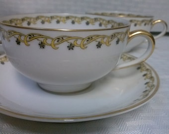 Cup and Saucer Haviland France Haviland & Co. Limoges