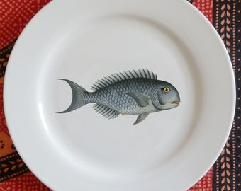 "fishy fish Salad/ Appetizer Plate -  ""chirurgeon"""