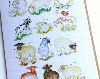 Greetings Card, Sheep and lambs