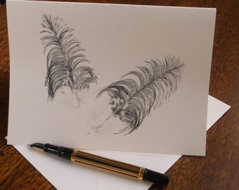 Greeting card - Two ibis feathers