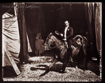 """Fred Glasier Circus Photo, """"Performing Horse with Rider"""", 1890-1925"""