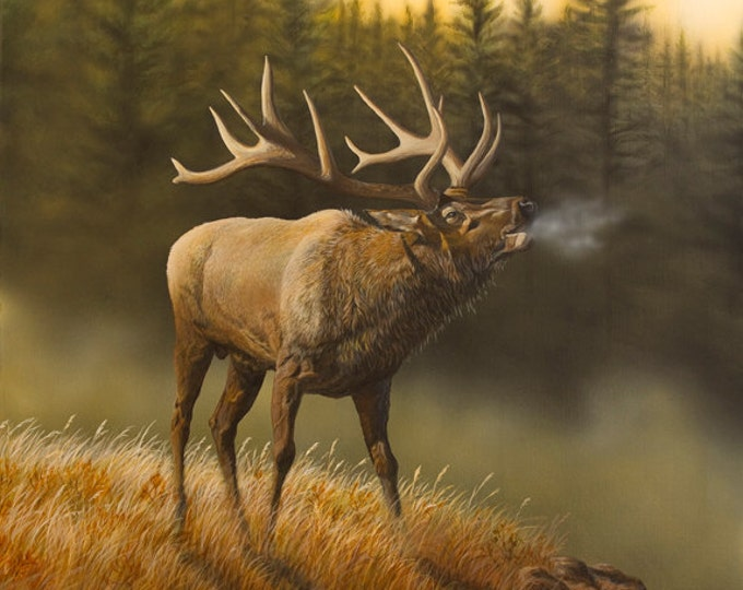 Father's Day gift Elk Print Elk Art Elk Painting Elk Hunting Bugling bull Honor the Call Limited Edition Canvas print by Nicole Heitzman