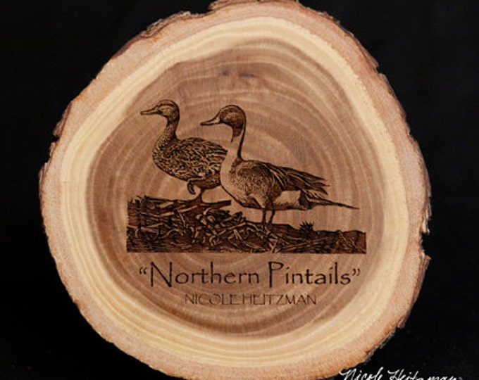 Father's Day Gift Northern Pintails Duck Art Duck Coaster Wood gift for men Lodge decor Cabin Man Cave Decor Wood Coasters Nicole Heitzman