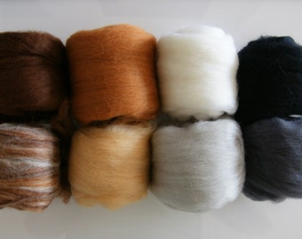 Critter Pack Extra Fine Merino Roving 4 Oz 8 Colors Pack for Felting