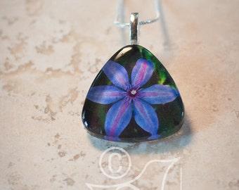 Clematis • art pendant necklace