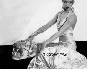Josephine Baker Pinup Model Tiger Poster Art Photo Hollywood Star Posters Photos 11x14
