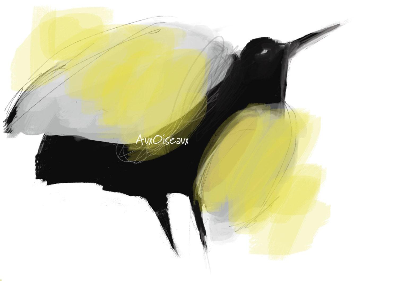 Oiseau noir gris jaune espoir lumi re dessin num rique for Oiseau jaune et noir