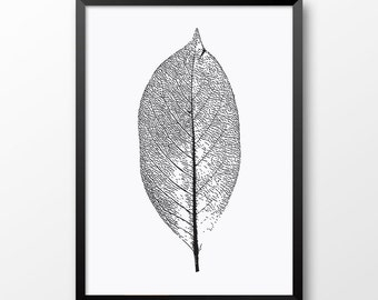 Leaf print, Wall art, Black and White, Scandinavian style, Nature print, Home decor 200