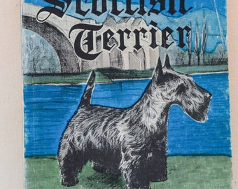 Pet Scottish Terrier