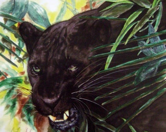"Watercolor Print ""Panther"" Artist B. Feyedelem"