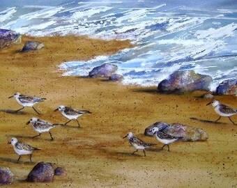 "Watercolor Print, ""Sandpipers""  Artist B. Feyedelem"
