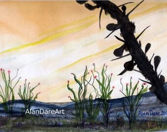 Ocotillo at sunset, watercolor, desert, wall art, fine art, original