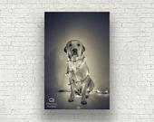 Christmas Labrador - Photography Print - Fine Art - Wall Art - Limited Edition - Sepia- Home Decor - Wall Art - Dog Poster - Surreal Art
