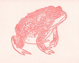 Letterpress Pink Toad Card