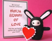 Ninja Bunny of Love with Box